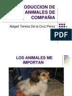 morfologia doctora abigail.pdf