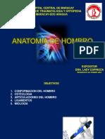 Anatomiadehombrodraespinoza 151202021053 Lva1 App6891