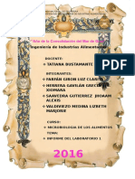 Informe Micro Alimentos
