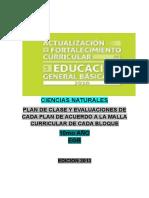 2.- Plan de clase 10mo CCNN.docx