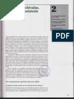 P1-C02 - Pequeñas Moléculas, Energía y Biosíntesis (Alberts)