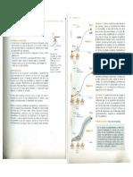 Capitulo 3 Como Desarrollar El Plan Del