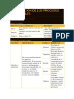 CLASIFICACIÓN DE LOS PROCESOS INDUSTRIALES.docx