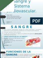Sangre-y-Sistema-Cardiovascular (2).pptx