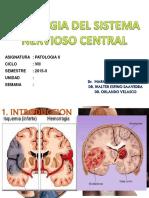 Patologia Del Sistema Nervioso