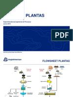 diagrama_plantas