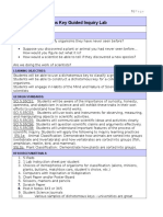 dyi dichotomous key guided inquiry paperwork