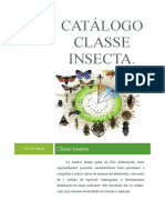 Catálogo Classe INSECTA