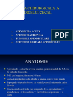 PATOLOGIA_APENDICELUI_CECAL