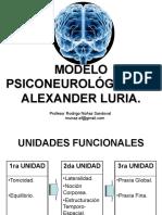 Modelo Neurológico de Alexander Luria