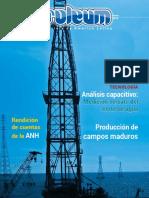 Petroleum 300 Enero 2015