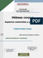 6.- Habeas Corpus 2014