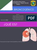Cáncer broncogénico