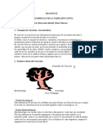 BLOQUE III.doc