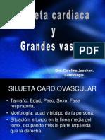 Rx Silueta Cardiaca y Grandes Vasos