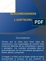 Gluconeogenesis y via PPT