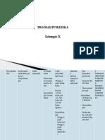 Program Puskesmas Klmpok IX