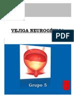 VEJIGA-NEUROGENICA-RESUMEN