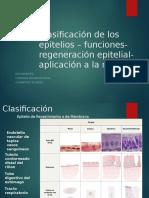 Clasificación de Los Epitelios – Funciones- Regeneración Epitelial