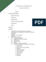 Protocolo Del Informe de Tesis