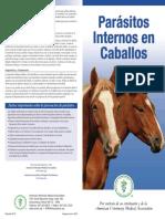 Parásitos internos en el equinos
