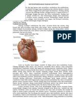 Sistem Peredaran Darah Jantung