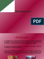 Carragena 1