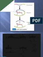 Clinical Biochem-Lecture2(DM)