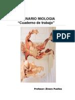 Manual Anatomia - Músculos