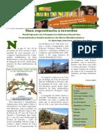 Jornal  Ecoestudantil, n.º 26,  Jan 2016