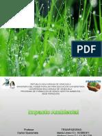 Impacto Ambiental Proyecto