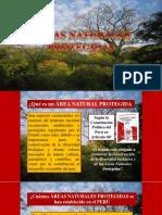 Clase 6 Areas Naturales Protegidas