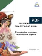 2016 Solucionario Guía 2 Biomoléculas Orgánicas Carbohidratos y Lípidos