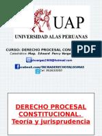 01 A Teoria y Jurisprudencia del Derecho Procesal Constitucional (1).ppt
