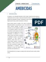 seminario amebicidas.doc