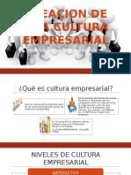 Creacion de Una Cultura Empresarial