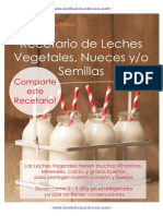 Leches Vegetales E-book Gratis
