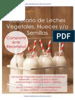 Leches Vegetales E-book Gratis