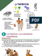 11 Genetica.ppt