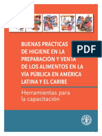 Manual BP Higiene Manufactura