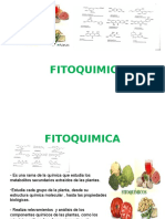 Fitoquimica