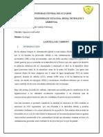 Consulta Ecologia Huella de Carbono