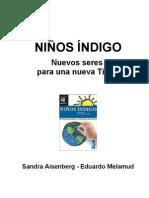 Ninos Índigo - Nuevos Seres para una Nueva Tierra