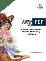 2016 Solucionario Guía 5 Células Eucariontes. Células Animales y Vegetales