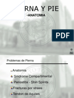 PIERNA Y PIE.pdf