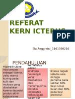 Referat Kern Icterus