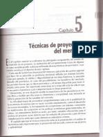 Libro-SAPAG 5ta Edic - Cap 05