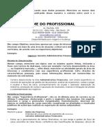 Cv Gerente Administrativo Financeiro
