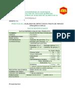 1.-PULPA-DE-MANGO.docx