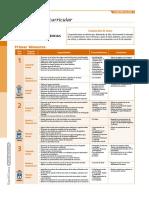 Programacion curricular.pdf